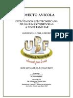 Proyecto Gallinas Ponedoras-documento Final