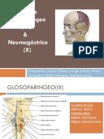 nervios IX Y X