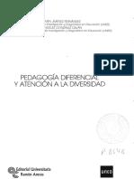 Pedagogia Diferencial y Atencion a La Diversidad.pdf