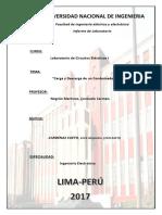 informe-previo5.docx