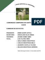 Estatuto de La Comunidad Campesina de Cachi