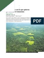 La carretera con la que quieren pavimentar el Amazonas.docx