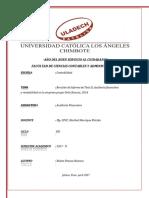 RESUMEN DE AUDITORIA FINANCIERA.pdf