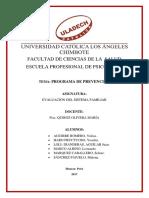 PROGRAMA-DE-PREVENCION-EN.docx