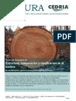 Estructura Composicion y Clasificacion de La Madera