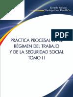 EJRLB- Practica Procesal en El Regimen Del Trabajo y de La Seguridad Social_Tomo II