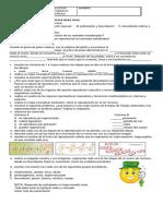 103464590 Actividades de Refuerzo Quinto Cn III Periodo 2012