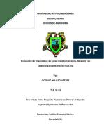 Evaluacion de 14 Genotipos de Sorgo (Sorghum Bicolor l. Moench) Con Potencial Para Alimentacion Humana