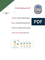 ejercicios de microbiologia.docx