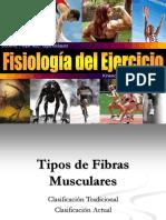 22 Tipos de Fibras Musculares