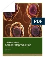 A Beginner's Guide to Cellular Reproduction