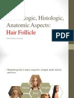 Embriologic, Histologic, Anatomic Aspects Hair Follicle