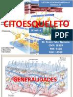 Sesión 4 - Citoesqueleto-ptn