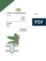 Pokémon - Tropius