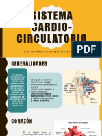 Clase 6 Sistema Cardio Circulatorio - Copia