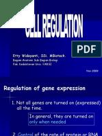 Presentasi Regulasi Sel