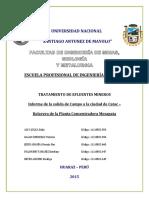Informe Salida de Campo Nº02 relavera de la planta concentradora mesapata -jangas