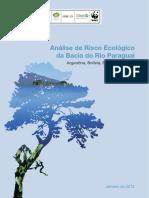 26jan12 Tnc Wwf Analise de Risco Portugues