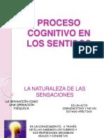 Proceso Cognitivo en Los Sentidos (1)