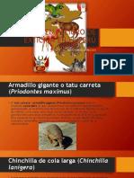 Animales en Peligro de Extición en El Perú