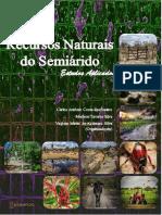 Artigos Workshop Recursos Naturais