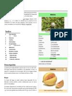 Cucumis_melo.pdf