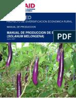 64155764-Manual-de-Produccion-de-Berenjena-Final.pdf