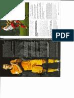 NCAFC Williams 2.pdf
