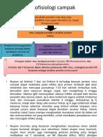 Patofisiologi Campak Fix