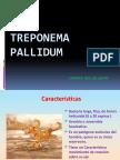 306848574-MICROBIOLOGIA-SIFILIS-1.pptx