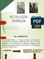 1._ECOLOGIA_contaminacion_e_impacto_ambiental__46799__ (1)