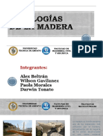 Grupo 5_patologias en Madera