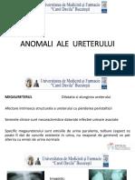 8. Anomaliile ureterului