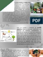 Enfoque Sistemico de La Gestión Ambiental