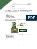 cdelmedio3principiosbasicosdeclasificacion