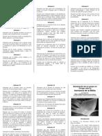 d08_chicago-declaracion_sobre_inspiracion_byn.pdf