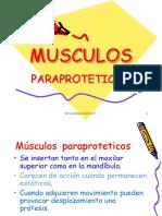 MUSCULOS_PARAPROTETICOS