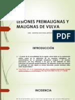 28. Lesiones Premalignas y Malignas de Vulva