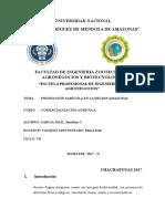 Diagnostico de La Produccion Agricola en La Region[1][1]