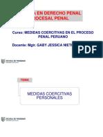 002 Pptsesion02 Med Coercitivas