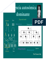 6Herencia Autosómica Dominante [Modo de Compatibilidad]