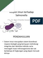 Mekanisme Respon Imun Salmonela