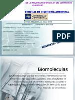 Biomoleculas - trabajo final.pptx