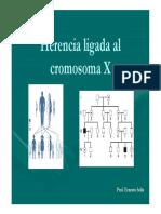 9Herencia ligada al X [Modo de compatibilidad].pdf