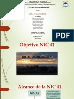 NIC-41 (1)