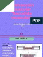 Sacudida Muscular