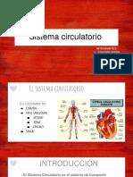 El sistema circulatorio en los reinos de la naturaleza