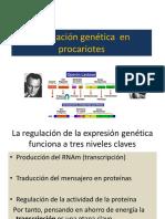 Regulación Genética en Procariotes