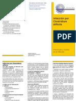 C Diff Brochure-1_Spanish2.pdf