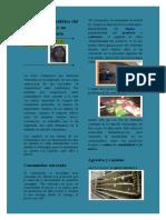 Cosumidor Venezolano